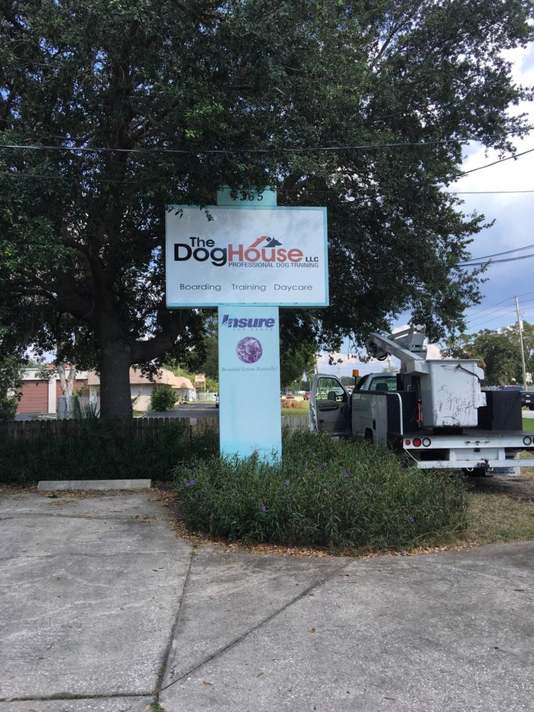 Dog House Light up Store Front
